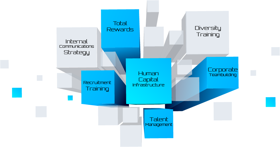 HR Contempo - End-to-end HR Solutions